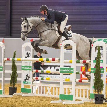 Paard Hardenberg verhuist naar Balkbrug